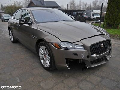 używany Jaguar XF X260