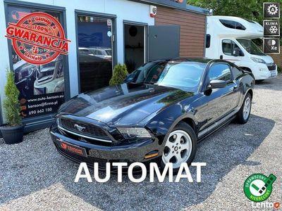 używany Ford Mustang Klimatyzacja, Tempomat, Automat, Zarejestrowany V (2005-2014)