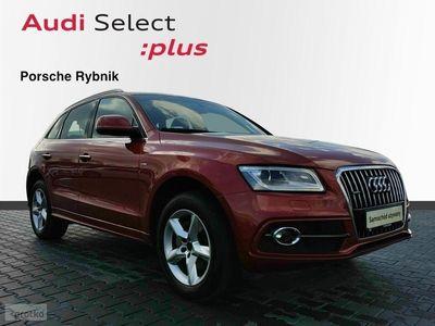 używany Audi Q5 I (8R) quattro 2.0 TDI 125 kW S tronic 2,0TDI,190KM,Quattro,S-line,Kamera c, Rybnik