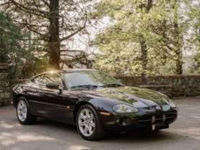 usado Jaguar XK Gasolina