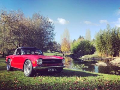 usado Triumph TR6 ---