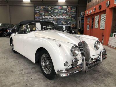 usado Jaguar XK ---